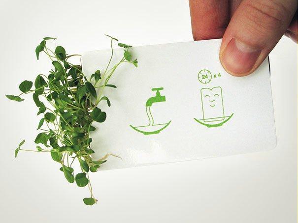 Необычные пластиковые визитки ООО «Дом Кард»